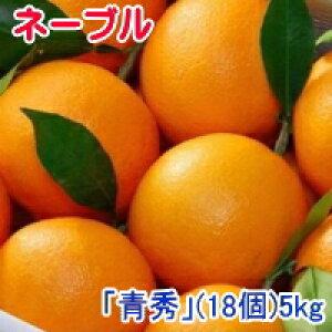 みかん 越冬完熟葉付きネーブルオレンジ「青秀」(5kg) 18個 JAかがわ