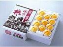 【発送は9月25日まで】「晴れの国おかやまの隠れた逸品」岡山特産 黄金桃(3kg)9個〜11個