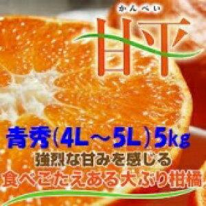 みかん 甘平 【青秀】 4L〜5L 5kg JAえひめオリジナル品種