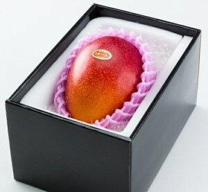 ★完熟マンゴー B品 2L(350g以上×1個) 「情熱みやざきブランド!」 ふるさと物産品