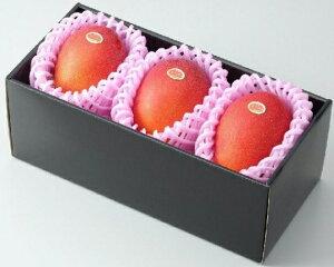 ★完熟マンゴー B品 2L(300g以上×3個) 「情熱みやざきブランド!」 ふるさと物産品