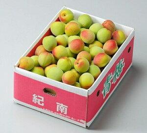 紀州 南高梅 【秀品】 3Lサイズ 約5kg 和歌山県産 ふるさと物産品