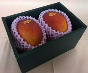 完熟マンゴー 【赤秀】 2L(350g以上×2個) 「情熱みやざきブランド!」 ふるさと物産品