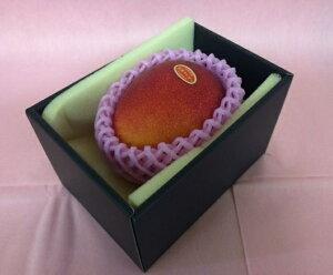完熟マンゴー 【赤秀】 3L(450g以上×1個) 「情熱みやざきブランド!」 ふるさと物産品