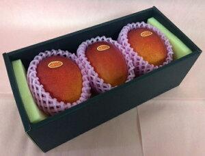 完熟マンゴー 【赤秀】 3L(350g以上×3個) 「情熱みやざきブランド!」 ふるさと物産品