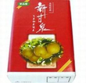 新甘泉(しんかんせん)【赤秀】約2kg(5〜6個入り)「JA鳥取オリジナル品種」鳥取の二十世紀梨が生んだ赤梨の新生。