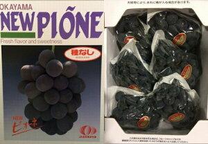 ぶどう ニューピオーネ 【優品】 3〜5房(2kg) ふるさと物産品
