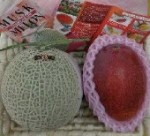 マスクメロン(アールス種)1個と宮崎県産完熟マンゴー 1個(400g以上)の詰合せ(バスケット入り) ふるさと物産品