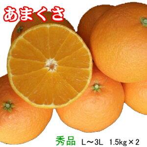 みかん 天草(あまくさ) 【秀品】 L〜3L(1.5kg)×2箱  (紅まどんなの親品種) JAえひめ