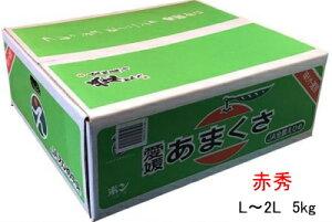みかん 天草(あまくさ) 【赤秀】 L〜2L(5kg)  (紅まどんなの親品種) JAえひめ