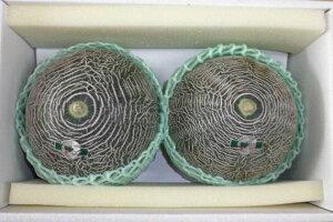 肥後グリーンメロン 3L(2個入) ふるさと物産品