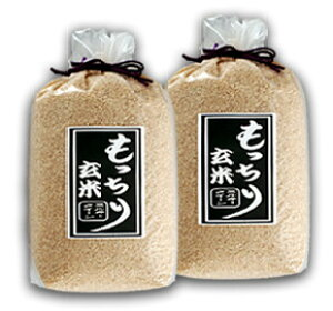 ☆もっちり玄米 5kg×2 岡山県産ミルキークイーン ふるさと物産品