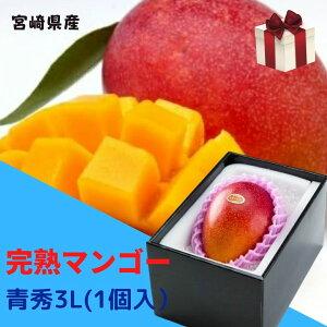 完熟マンゴー 【青秀】 3L(約450g以上×1個) 「情熱みやざきブランド!」 ふるさと物産品