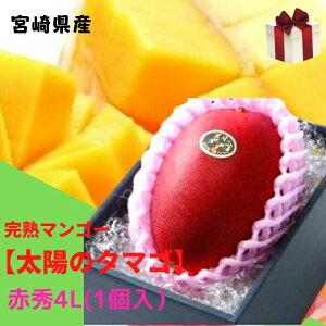 完熟マンゴー【太陽のタマゴ】 赤秀 4L(約510g以上×1個) (糖度15度以上) JA宮崎 ふるさと物産品