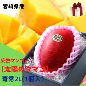 完熟マンゴー【太陽のタマゴ】 青秀 2L(約350g以上×1個) (糖度15度以上) JA宮崎 ふるさと物産品 ギフト 贈答用 御礼 御祝 誕生日