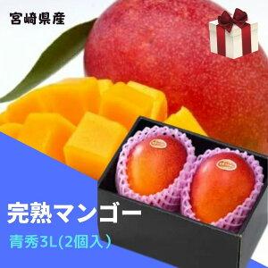 完熟マンゴー 【青秀】 3L(約450g以上×2個) 「情熱みやざきブランド!」 ふるさと物産品