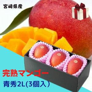 完熟マンゴー 【青秀】 2L(約300g以上×3個) 「情熱みやざきブランド!」 ふるさと物産品