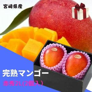 完熟マンゴー 【赤秀】 2L(約350g以上×2個) 「情熱みやざきブランド!」 ふるさと物産品
