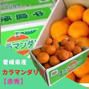 みかん カラマンダリン 【赤秀】M〜Lサイズ(約5kg) JAえひめ中央 ふるさと物産品