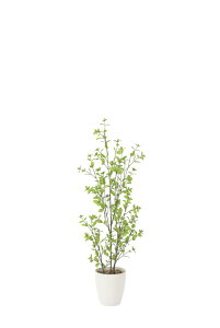 【500円OFFクーポンあり】【直送品】光触媒人工植物 光の楽園 2018 ユーカリ1.3 819A230 W43×D40×H130cm