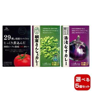 【選べる5個セット】キャニオンスパイス ご当地食材シリーズB レトルトカレーセット×5
