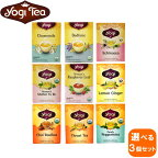 【選べる3個セット】yogiヨギティー16TB×3