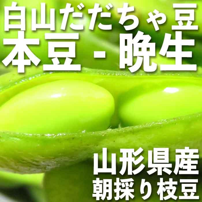 庄内 白山産 だだちゃ豆 茶豆 本豆 晩生 1kg【2018年冷凍】(500g野菜鮮度保持パック×2袋)