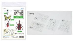 プラ板でつくる昆虫図鑑