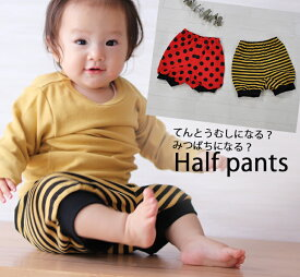 子供服 パンツ オールシーズン履けるなりきりバルーンパンツてんとうむし・みつばち(80cm 90cm 100cm) 2998・メール便可20