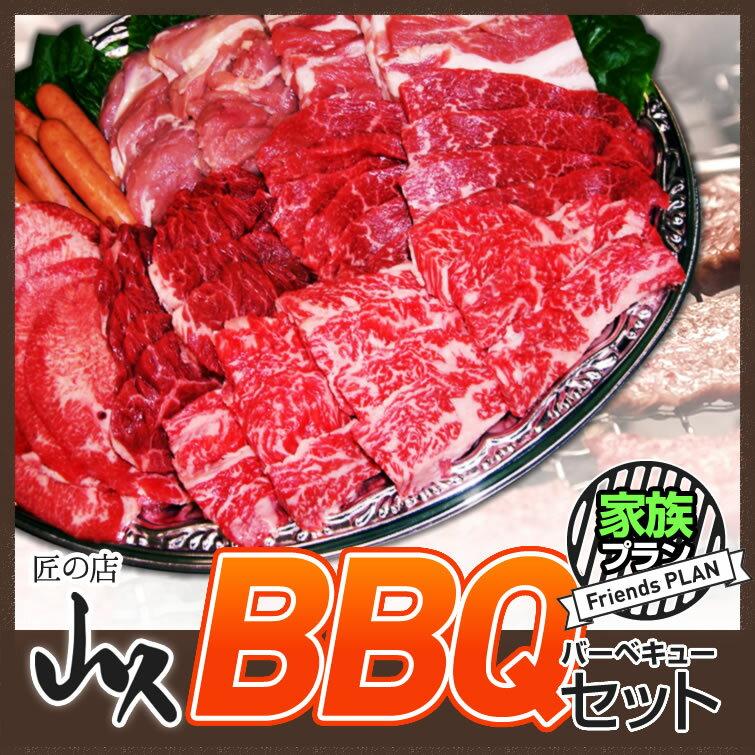 バーベキュー セット 送料無料:家族プラン | 肉 牛肉 豚肉 キャンプ BBQ 焼き肉 焼肉 パーティー 運動会 子供会 誕生日会 ギフト お取り寄せ 景品 お祝い 内祝い