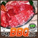 バーベキュー セット 送料無料:家族プラン | 肉 牛肉 豚肉 キャンプ BBQ イベント 焼...
