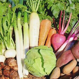 無農薬野菜セット(8〜10種類) 送料無料 帰省土産 お供え お土産 手土産 ポイント 倍 ポイント消化