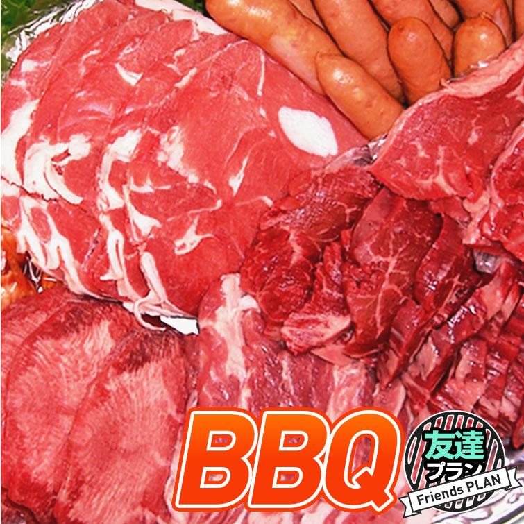 バーベキュー セット 送料無料:友達プラン   肉 牛肉 豚肉 キャンプ BBQ 焼き肉 焼肉 パーティー 運動会 子供会 誕生日会 ギフト お取り寄せ 景品 お祝い 内祝い