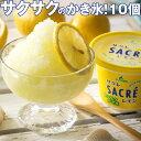 サクレレモン10個セット 送料無料 アイス シャーベット カップ イベント 景品 会社 大量 法人 食べ物 敬老の日 お歳暮…