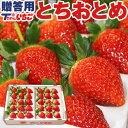 いちご 苺 ホール詰め 600g x 1箱 (贈答用) /栃木県産 とちおとめ 貞ちゃん いちご とちおとめ(栃乙女) 送料無料 |…