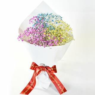 ロマンチックかすみ草<お試し3色セット>キラキラ輝くかすみ草。 [花 寒中見舞い バレンタイン お祝い プレゼント バースデー 誕生日 歓迎会 送迎会 開店祝い 結婚祝い 結婚式 退職 送別 などに◎なフラワーギフトにもおすすめ