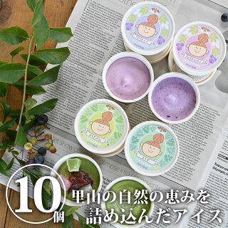 アイスクリーム10個セット