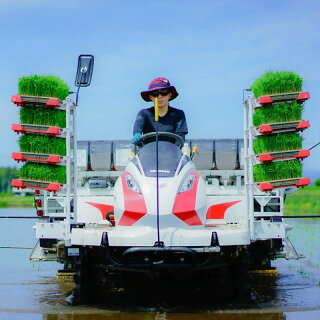 momofarm四季と育むお米