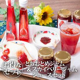 【送料無料】【クーポン利用で20%OFF】とちぎのいちごがぎゅ〜っと詰まった とちおとめ&スカイベリージャム・ジュースセット|朝食 おやつ いちご イチゴ 苺 セット 詰め合わせ 栃木県産 国産【TSM】