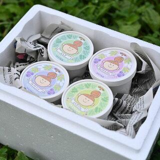 【送料無料】【クーポン利用で30%OFF】アイスクリーム10個セット