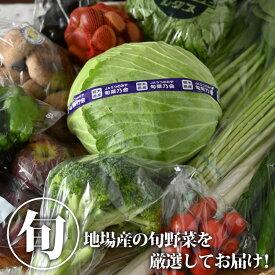 【送料無料】【クーポン利用で30%OFF】地場野菜詰め合わせセット|野菜セット やさい 国産 栃木県産【TSM】