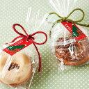 【ネコポスOK】クリスマスの贈り物 緑と赤のクリスマスカラー ツリーとポインセチアのタグ10枚入