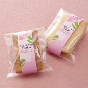 ピンクのカーネーションを添えて贈る母の日のミニ帯250枚入プレゼント カーネーション ギフト スイーツ 鉢植え アレンジメント エプロン 母の日 プリザーブドフラワー