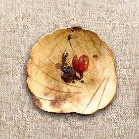 ソープディッシュ 南国風 椰子 外皮製 アジアン ナチュラル系 (シェル)
