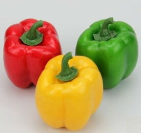 食品サンプル パプリカ 3色 6個セット