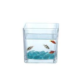 ガラス鉢 ミニ金魚鉢 角型 シンプル (小サイズ)