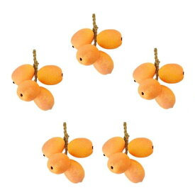 食品サンプル 枝付きびわ 果物 食品模型 5枝セット (4個タイプ)