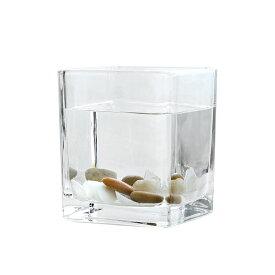 【訳あり】ガラス鉢 ミニ金魚鉢 角型 シンプル (大サイズ)