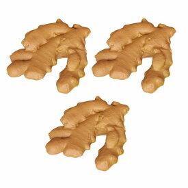 食品サンプル 根生姜 3個セット