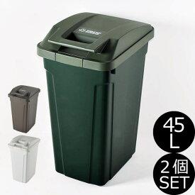 日本製 SP ハンドル付ダストボックス 45L 2個セット ゴミ箱 ごみ箱 ダストボックス ふた付き おしゃれ 分別 屋外 45リットル スリム キッチン インテリア雑貨 北欧 リビング くずかご かわいい デザイン ごみばこ 蓋付き フタ付き 白 ホワイト アスベル